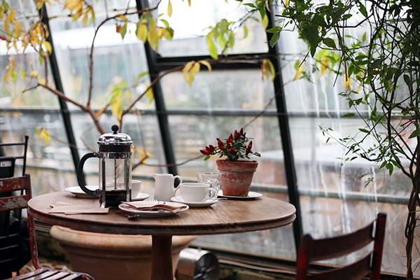Nhâm nhi tách cà phê