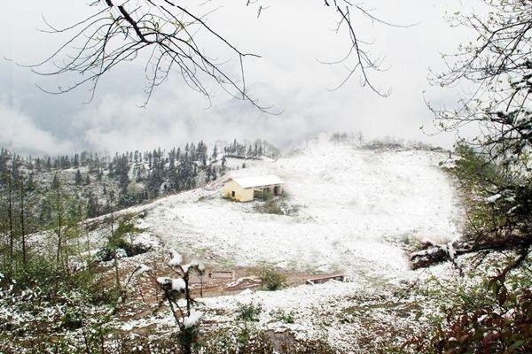 Tới Sapa - Lào Cai ngắm tuyết rơi