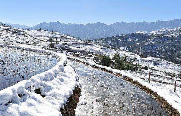 Lên Mẫu Sơn, Lạng Sơn ngắm tuyết rơi