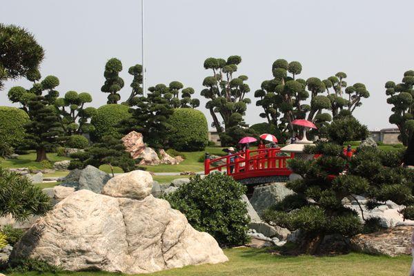 Công viên Cá Koi Rin Rin Park