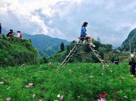 Top địa điểm du lịch quanh Hà Nội