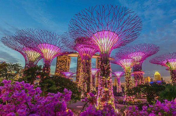 Thời gian bay từ Sài Gòn đến Singapore